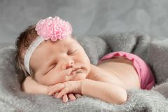 Sleeping newborn girl with a pink bow. Portrait of a newborn girl Royalty Free Stock Photos