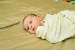 Portrait of the newborn girl wrapped in scarf Royalty Free Stock Image