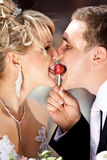 Portrait of newly married couple eating on lollipop Stock Images