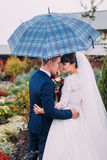 Portrait of newlywed bride and groom with checked umbrella in the flower garden Royalty Free Stock Photo