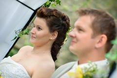 Portrait of newlyweds Stock Images