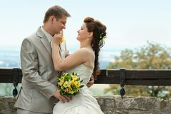 Portrait of newlyweds Royalty Free Stock Photo