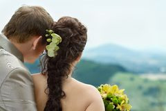 Portrait of newlyweds Stock Images