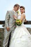 Portrait of newlyweds Royalty Free Stock Image