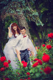 Portrait newlyweds among the blooming roses. Bride and groom hugging among the bushes of red roses. Consider the rose petals on the hectic palms. Wickedness on stock photo