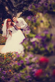Portrait newlyweds among the blooming roses. Bride and groom hugging among the bushes of red roses. Consider the rose petals on the hectic palms. Wickedness on Royalty Free Stock Photos