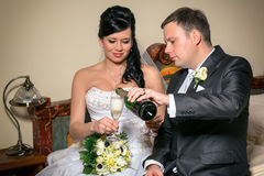 A toast to newlyweds at the wedding Royalty Free Stock Photography