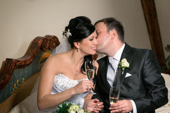 A toast to newlyweds at the wedding Royalty Free Stock Photos