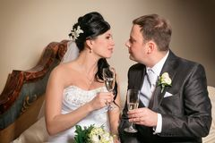 A toast to newlyweds at the wedding Royalty Free Stock Images