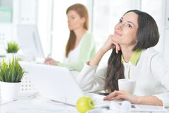 Portrait of a nice business woman with a laptop. Portrait of a nice business women with a laptop in the office Royalty Free Stock Images