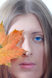 Portrait of the nice girl with a maple leaf. Portrait of the nice girl with an autumn maple leaf removed close up Royalty Free Stock Images