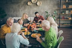 Portrait of nice idyllic cheerful big full family couples eating domestic tasty yummy meal dishes feast gratefulness