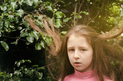 Portrait of the nice little girl Stock Photos