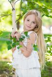 Portrait of nice little girl Royalty Free Stock Photo