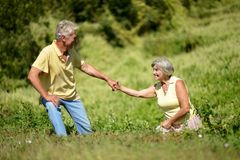 Portrait of nice mature couple on green grass in summer park royalty free stock photo