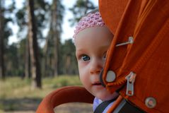 A portrait of a nice nine-month baby girl looking curiously with her clear blue eyse out of an orange stroller. stock photography