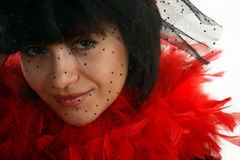 Portrait of nice woman in black veil. And red velvet, face closeup Stock Photos