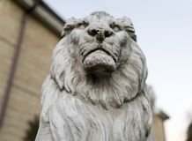Portrait of a noble and regal male lion stone statue in a stately home garden in England, United Kingdom. Portrait of a noble and regal male lion stone statue in royalty free stock photography