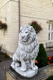 Portrait of a noble and regal male lion stone statue in a stately home garden in England, United Kingdom royalty free stock images