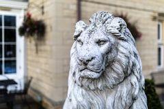 Portrait of a noble and regal male lion stone statue in a stately home garden in England, UK. Portrait of a noble and regal male lion stone statue in a stately royalty free stock images