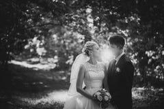 Portrait noir et blanc de photo du marié de jeune mariée sur la forêt Images libres de droits
