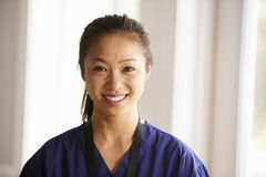 Portrait Of Nurse In Assisted Living Project royalty free stock images