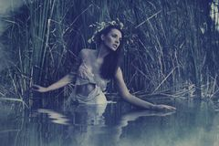 A portrait of nymph. A portrait of water nymph Stock Photography