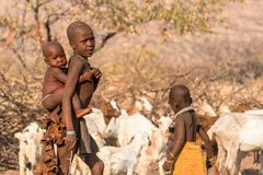 Free Portrait Of A Himba Girl Looking After The Goat Herd Carrying A Baby On Her Back, Epupa Falls, Namibia Royalty Free Stock Image - 160523896