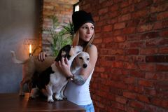 Portrait Of A Hipster Tattoed Girl With Her Little Dogs In Room With Loft Interior. Stock Photography
