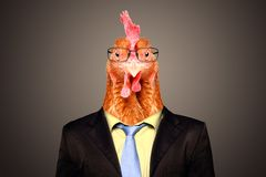 Free Portrait Of A Rooster In A Business Suit And Glasses Stock Image - 168234671