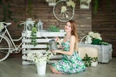 Portrait Of A Young Girl In A Spring Studio Royalty Free Stock Image