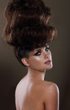 Portrait Of Glamorous Lady With Updo Stock Images