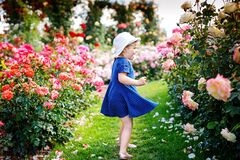 Free Portrait Of Little Toddler Girl In Blossoming Rose Garden. Cute Beautiful Lovely Child Having Fun With Roses And Flowers Stock Photos - 192401683