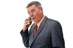 Free Portrait Of Senior Businessman Stock Image - 8074221