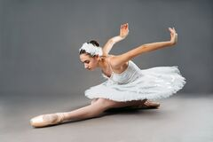 Free Portrait Of The Ballerina In The Role Of A White Swan On Grey Background. Beautiful, Attractive, Young, Graceful Girl Royalty Free Stock Images - 208743989