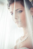 Portrait Of The Bride With A Veil Covered Face Stock Image