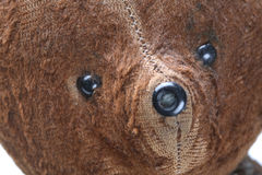 Free Portrait Of The Old Teddy Bear Stock Images - 2225164