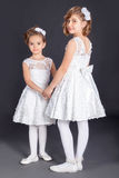 Portrait Of Two Little Girl In Luxurious Dress. Fashion Photo Royalty Free Stock Image