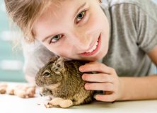 Free Portrait Of Young Girl With Degu Squirrel Royalty Free Stock Photography - 109826477