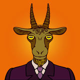 Portrait of office goat Royalty Free Stock Images