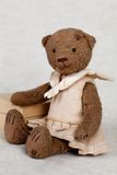 Portrait of old fashioned teddy bear Royalty Free Stock Photography