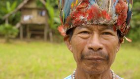 Portrait of an old indigenous man. Portrait of an old, indigenous, amazonian man standing in his village wearing traditional outfit and a colorful hat slow stock video footage