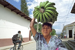 Portrait old Latino woman with bunch of bananas Stock Photo