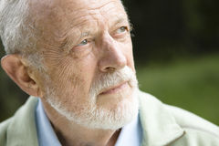 Portrait of Old Man Royalty Free Stock Image