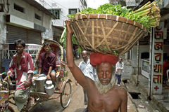 Portrait of old man carrying vegetables on head. Bangladesh: This senior farmer, peasant, horticulturist, brings its agricultural products to the market to sell Royalty Free Stock Photography