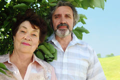 Portrait of old man and woman standing near tree Royalty Free Stock Photos