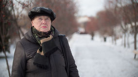 Portrait of old woman in park at winter day Royalty Free Stock Image