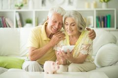 Portrait of a old woman with piggy bank royalty free stock image