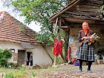 Portrait of an old woman in a village courtyard Stock Photos