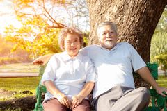 Portrait older couple. Attractive grandma and grandpa look strong and good health. Grandparents have always gotten good positive royalty free stock images